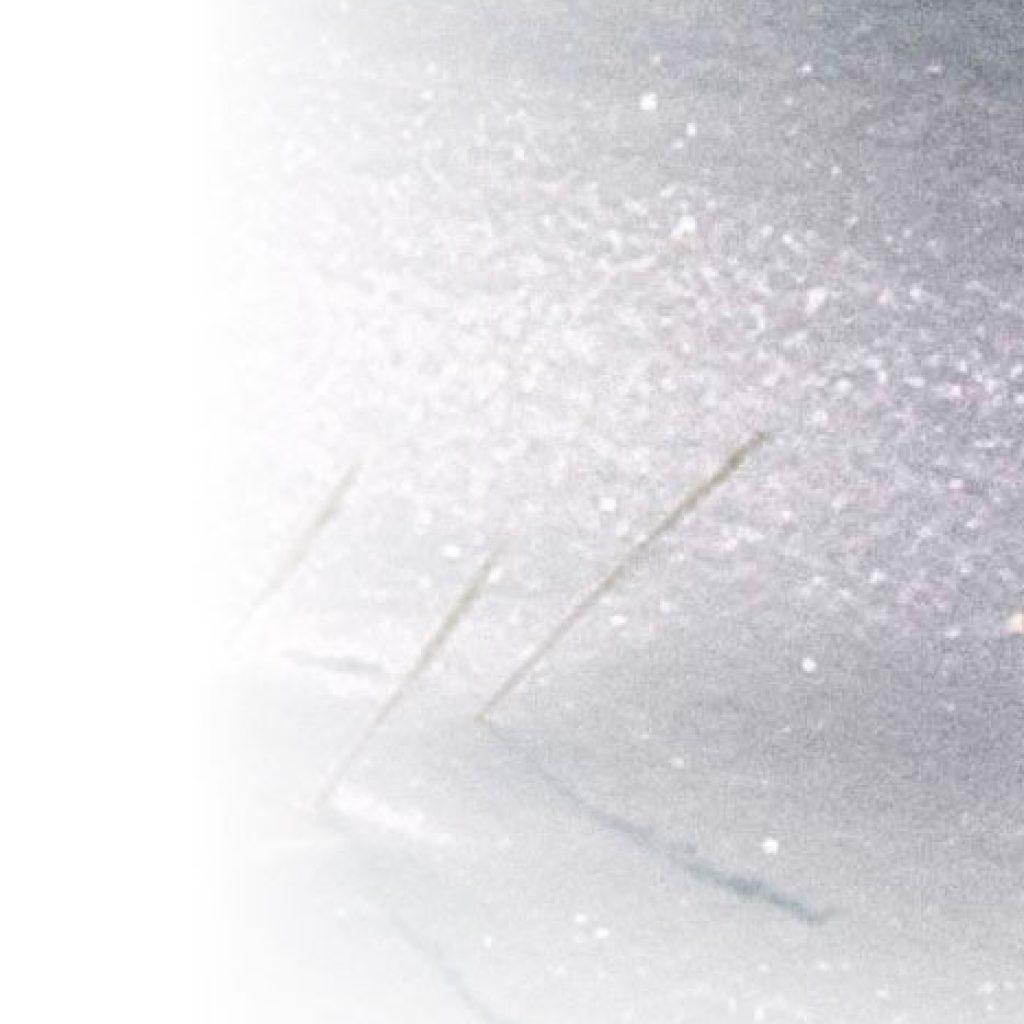 Sotto la neve il grano Alessandra Lancellotti psicologo life coach psicoterapeuta
